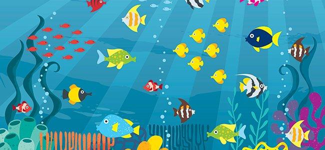 Cuentos del mar y el océano