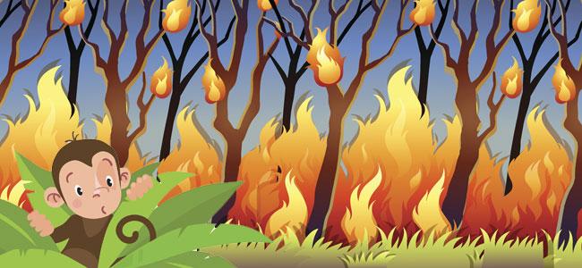 Un Incendio En La Selva. Cuentos Infantiles Sobre La