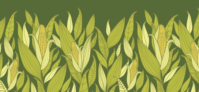 El cuento del maíz y el dios Quezalcóatl