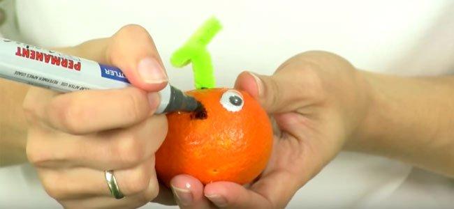 Mandarina calabaza