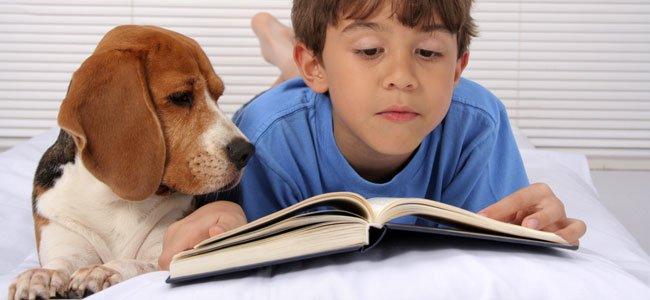 Cuentos con mascotas para niños