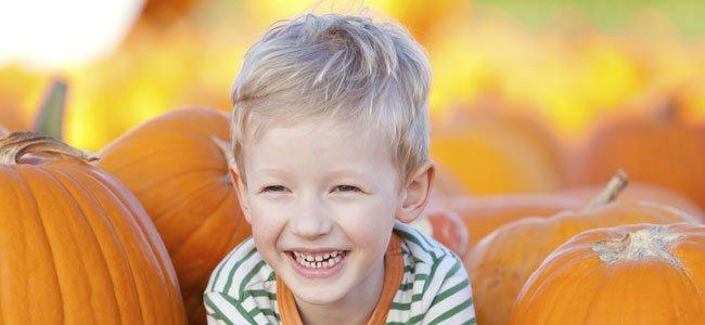 Niño ríe con calabazas