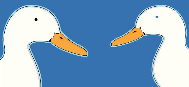 Pato y Don Pito
