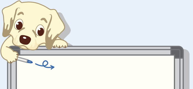 Escuela de perritos