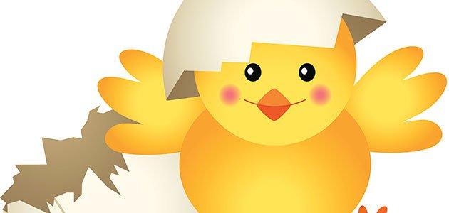 Un pollito llamado Llito. Nuevos cuentos infantiles