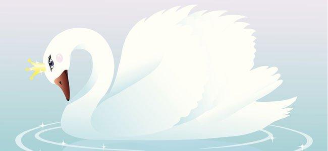 Cisne princesa