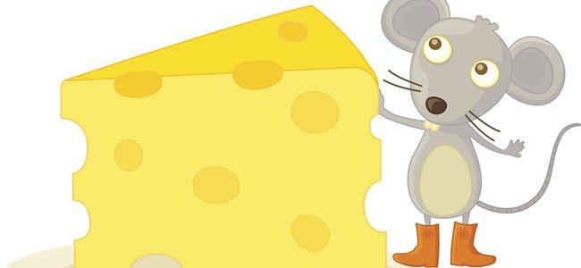 Ratón con queso