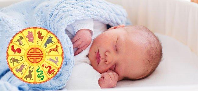 Bebé con horóscopo chino