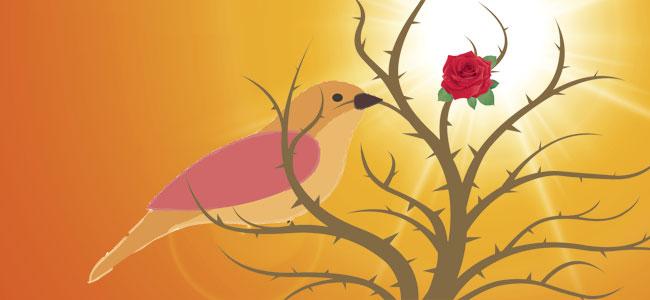 El ruiseñor y la rosa. Cuento para niños sobre valores