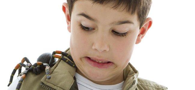 Cómo curar picaduras de araña en los niños