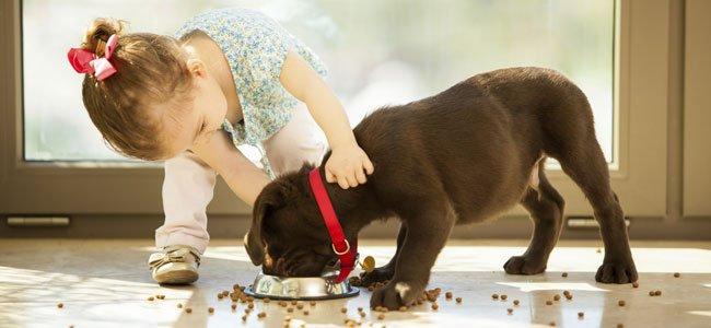 Niña con perro que come
