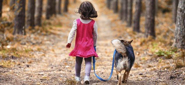 Niña camina con perro