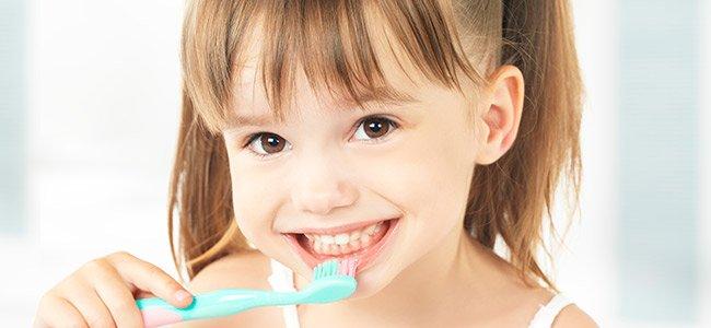 Dientes de leche y dientes definitivos