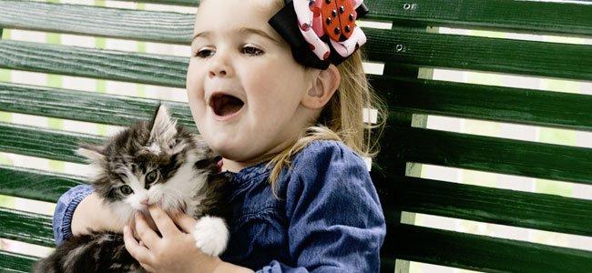 Mordeduras de animales a niños