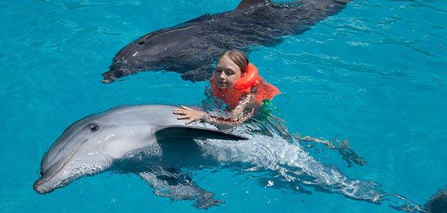 niño con delfines