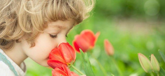 Niña huele flor