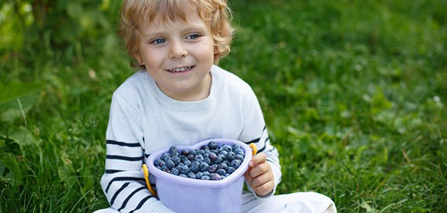 Niño sentado con arándanos