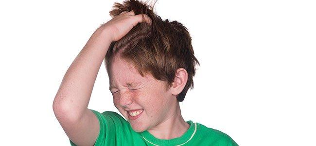 Los piojos qué son y como llegan a los niños