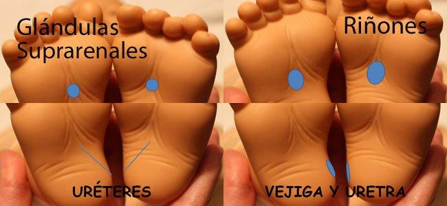 Puntos reflexología