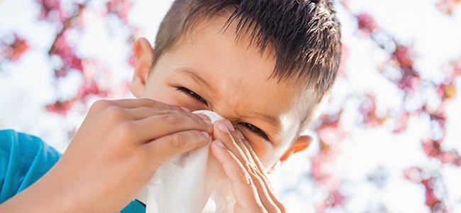 Remedios naturales para combatir alergia al polen