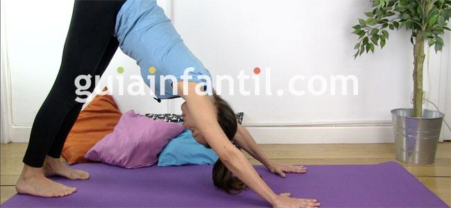 Postura de yoga del perro