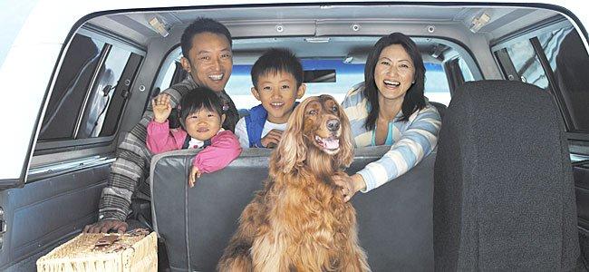 Viajes familiares con mascotas
