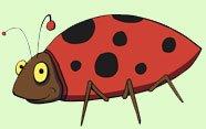 Insectos en lengua de signos